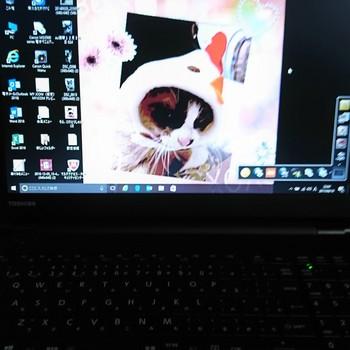 DSC_0757 (3)ソラ壁紙パソコン.jpg